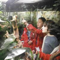 Vivarium At Manchester Museum